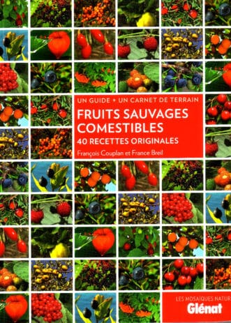 Fruits_sauvages_comestibles_couv