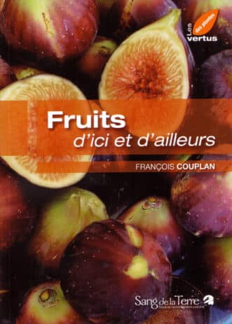 Fruits DIDA