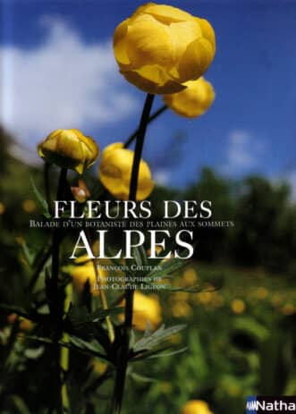 fleur_des_alpes
